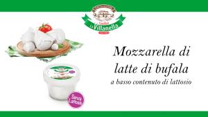 Mozzarella di latte di bufala senza lattosio